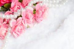 Fond rose de fleur de canation avec l'endroit pour le texte Photo libre de droits