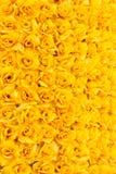 Fond rose de jaune Photos libres de droits