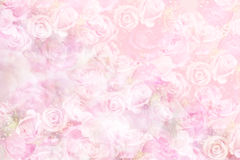 Fond rose de pastel Photographie stock libre de droits