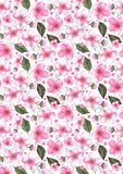 Fond rose de texture de modèle de Sakura de cerise d'aquarelle illustration libre de droits