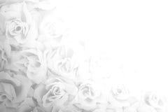 Fond rose de tissu Photographie stock