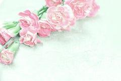 Fond rose doux mou abstrait de fleur de fleur d'oeillet Images libres de droits