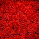 Fond rouge artificiel de fleur Photographie stock libre de droits