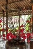 Fond rouge de fleur dehors en nature d'île de Bali, Indonésie Photographie stock