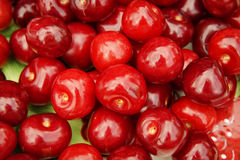 Fond rouge de macro de cerises Image libre de droits