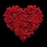 Fond rouge de valentine de pétales de rose Photos libres de droits