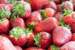Fond rouge frais de plan rapproché de fraise Fin de fraise de texture  Image stock