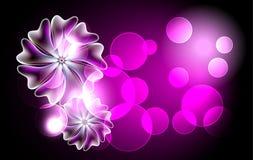 Fond rougeoyant avec des fleurs Photos libres de droits