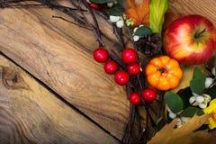 Fond rustique avec les baies de pomme, de potiron, rouges et blanches, Co Images libres de droits