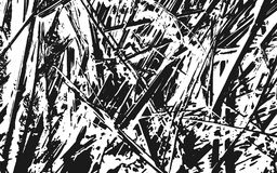 Fond rustique d'herbe de texture noire et blanche de silhouette Image stock