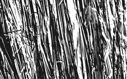 Fond rustique d'herbe de texture noire et blanche de silhouette illustration stock