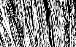 Fond rustique d'herbe de texture noire et blanche de silhouette Image libre de droits