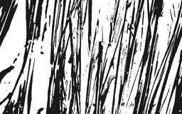 Fond rustique d'herbe de texture noire et blanche de silhouette Images stock