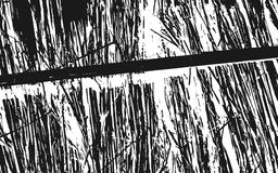 Fond rustique d'herbe de texture noire et blanche de silhouette illustration libre de droits