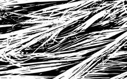 Fond rustique d'herbe de texture noire et blanche de silhouette Photo libre de droits