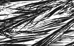 Fond rustique d'herbe de texture noire et blanche de silhouette Photographie stock