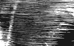 Fond rustique d'herbe de texture noire et blanche de silhouette Photographie stock libre de droits