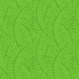 Fond sans couture avec des feuilles de fougère Photographie stock libre de droits