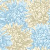 Fond sans couture avec l'aster beige et bleu Tiré par la main avec l'effet du dessin dans l'aquarelle Photo libre de droits