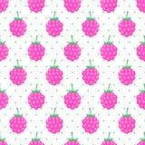 Fond sans couture avec la framboise rose Image libre de droits
