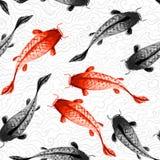 Fond sans couture avec les carpes rouges et noires de koi Photographie stock