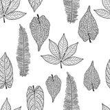 fond sans couture avec les feuilles décrites d'arbre Photographie stock libre de droits