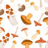 Fond sans couture coloré de modèle avec différents champignons Image libre de droits