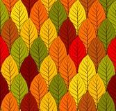 Fond sans couture coloré de vecteur de modèle de feuilles d'automne Image stock