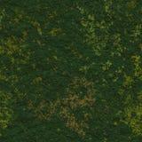 Fond sans couture d'herbe Photo libre de droits
