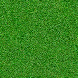 Fond sans couture d'herbe verte Image libre de droits