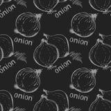 Fond sans couture d'oignon illustration libre de droits