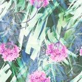 Fond sans couture de cru d'aquarelle avec un modèle floral, une branche d'une fleur rose, feuilles, lavande, fleur sauvage image stock