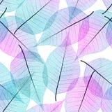 Fond sans couture de feuilles Image libre de droits