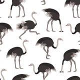 Fond sans couture de modèle d'oiseau d'autruche de bande dessinée Vecteur Illustration Libre de Droits