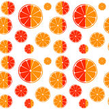Fond sans couture de modèle de tranches d'orange et de pamplemousse Photos stock