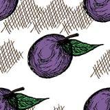 Fond sans couture de prune Photos libres de droits