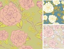 Fond avec des fleurs de Rose Image libre de droits