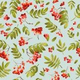 Fond sans couture de sorbe de chute Autumn Pattern floral avec des feuilles et des baies Photographie stock libre de droits