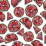 Fond sans couture de tranches de pamplemousse Modèle d'agrume Illustration de vecteur de style de griffonnage Image stock