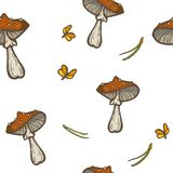 Fond sans couture de vecteur avec des champignons, des aiguilles et des mites Agari de mouche d'amanite Photographie stock