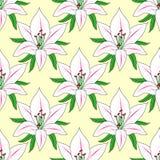 Fond sans couture de vecteur avec le lis de fleur Images stock