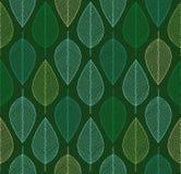 Fond sans couture de vecteur avec les feuilles colorées par ressort Images stock