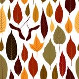 Fond sans couture de vecteur de modèle avec les feuilles d'automne colorées Photo libre de droits