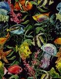 Fond sans couture de vie marine d'aquarelle Illustration Stock