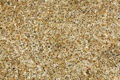 Fond sans couture en pierre de carrelage de caillou Texture mélangée de plancher de pierre de caillou de gravier de ciment photo libre de droits