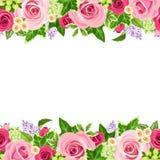 Fond sans couture horizontal avec les roses rouges et roses Illustration de vecteur illustration stock