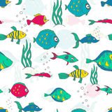 Fond sans couture lumineux d'illustration de modèle avec différents poissons colorés Photographie stock libre de droits