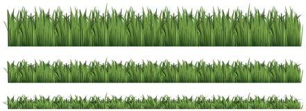 Fond sans couture pour l'herbe verte Photos stock