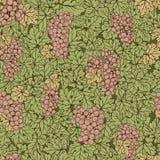 Fond sans couture tiré par la main de raisin de modèle Feuilles de vert, groupes roses Image stock