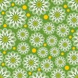Fond sans couture vert clair de vecteur avec les marguerites des prés blanches d'ensemble et les points jaunes Fond gai pour la c illustration libre de droits
